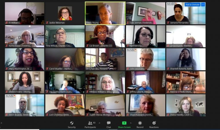 screen shot of zoom meeting in progress annual conference 2020